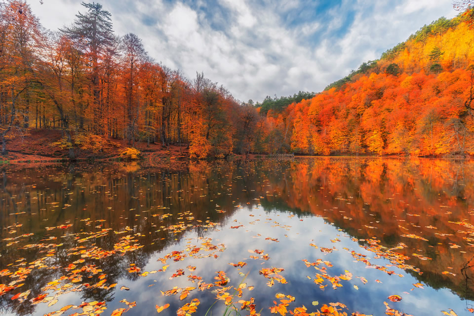 10 Things to Do During Your Autumn Years