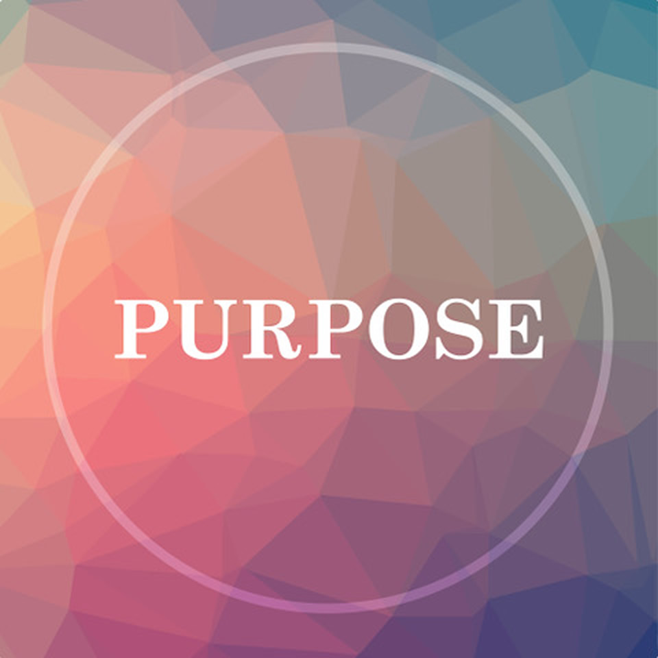 What is our Life Purpose?